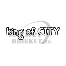 King of City